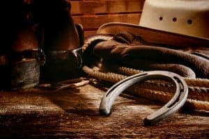 Western horse riding kit with cowboy boots, hat, lasso, and horse shoe