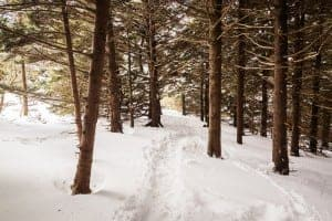 Winter hiking trail in the mountains