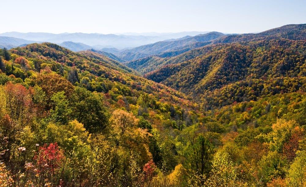 Fall colors near our Smoky Mountain condo rentals.