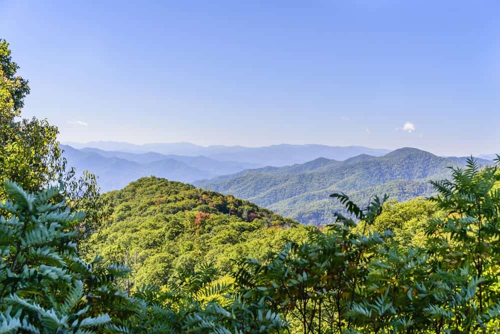 Summer in the Smoky Mountains